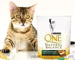 Katzenfutter kostenlos